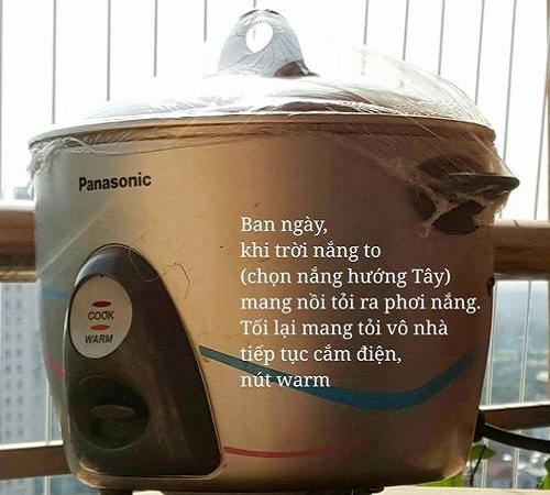 ủ tỏi bằng nồi cơm điện