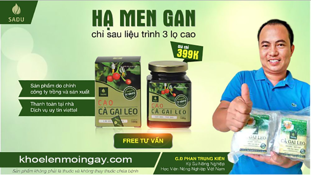 PHAN TRUNG KIÊN chủ tịch công ty Cà Gai Leo