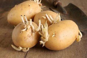 Công dụng của củ khoai tây