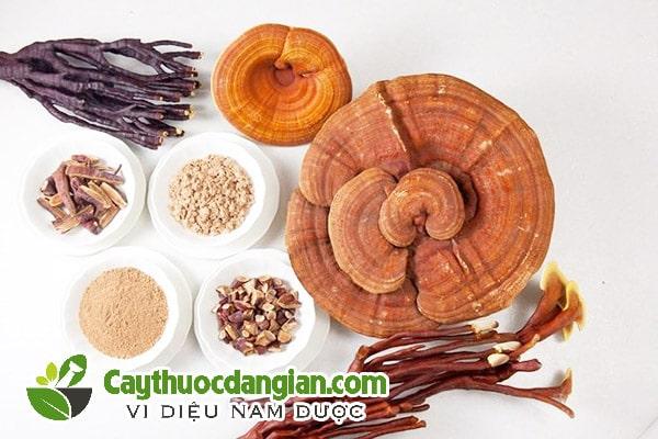 Cách sử dụng nấm linh chi