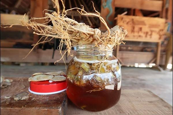Uống tam thất mật ong có tác dụng gì