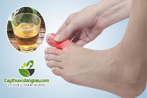 Điều trị bệnh gout bằng lá tía tô