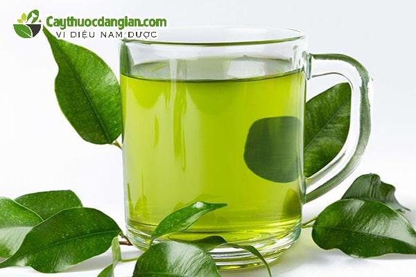 Lá trà xanh chữa sâu răng