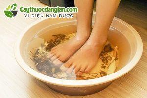 Ngâm chân bằng lá tía tô