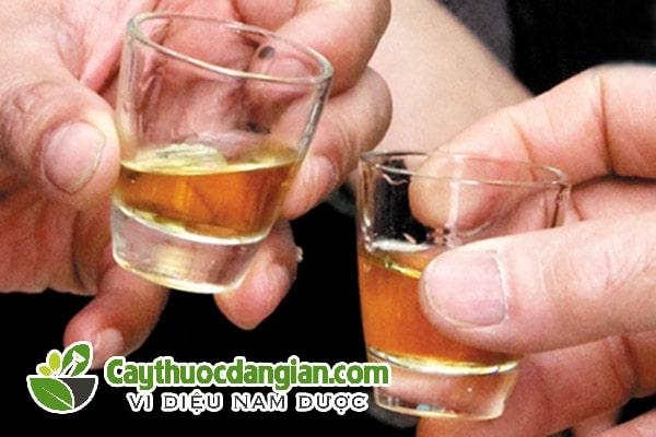 Cách dùng rượu đinh lăng