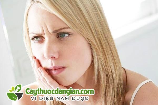 Cây gạo trị đau răng