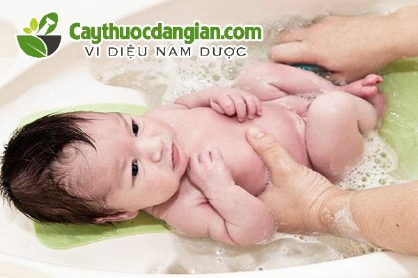 Tắm nước lá vối cho trẻ sơ sinh
