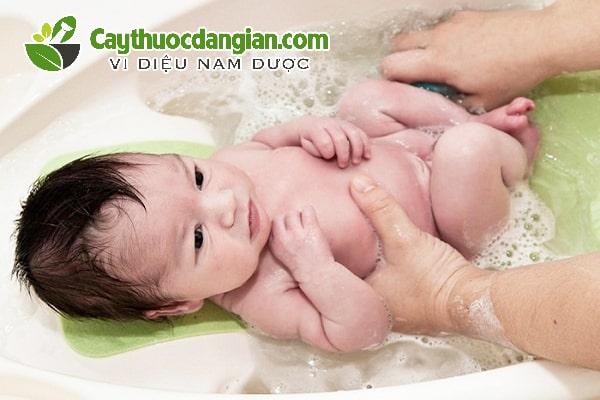 Cách tắm lá đinh lăng cho trẻ sơ sinh