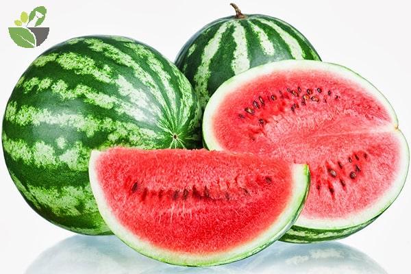 Trái dưa hấu với hàm lượng dinh dưỡng cao tốt cho sức khỏe