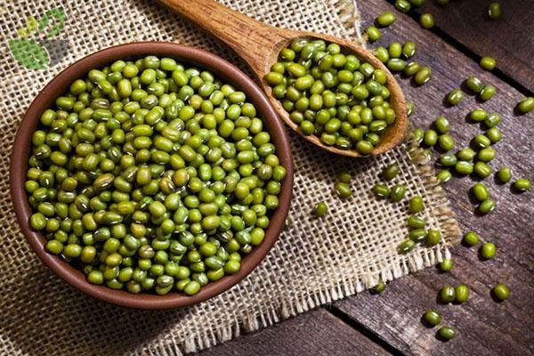 Dinh dưỡng trong đậu xanh