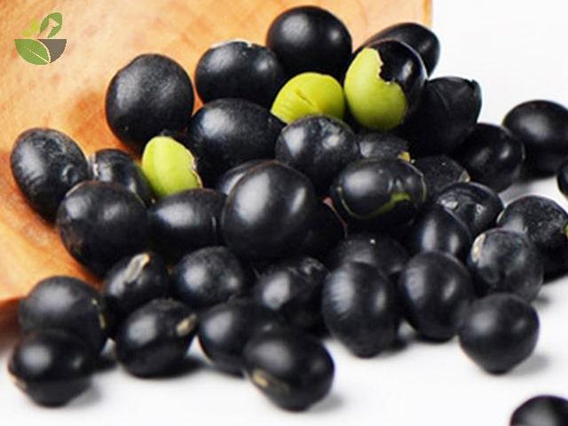 Các loại đậu đen xanh lòng