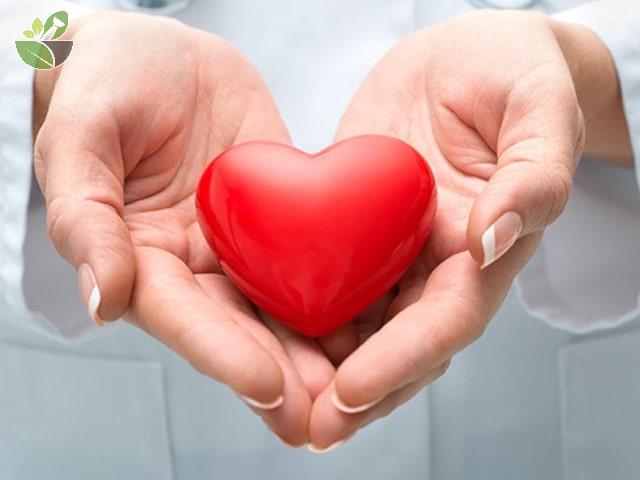 Gà hầm đậu đen tốt cho tim mạch