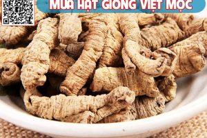Ba kích Trung Quốc được rao bán tràn lan